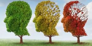 dementia-north-york-medical-clinic